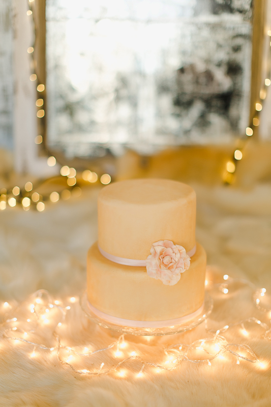 Cozy winter wedding Film