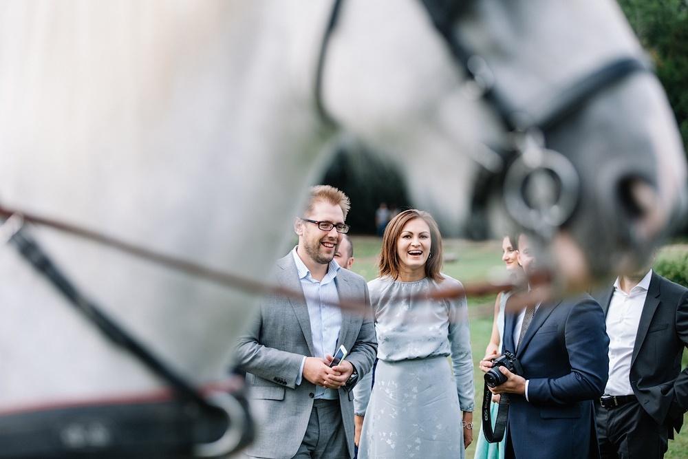 Гости на свадебном коктейле во Франции