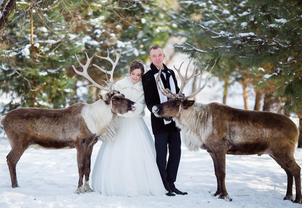 Анастасия и Дмитрий