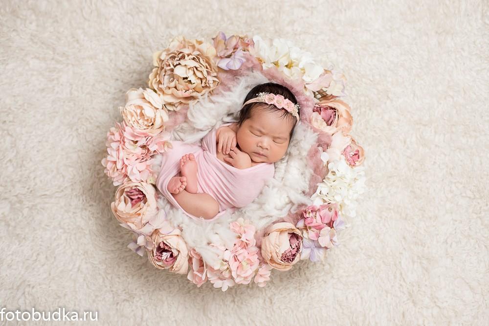 новорожденные цветочная корзина