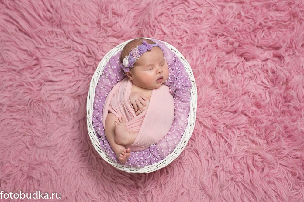 фото новорожденных девочек в цветах