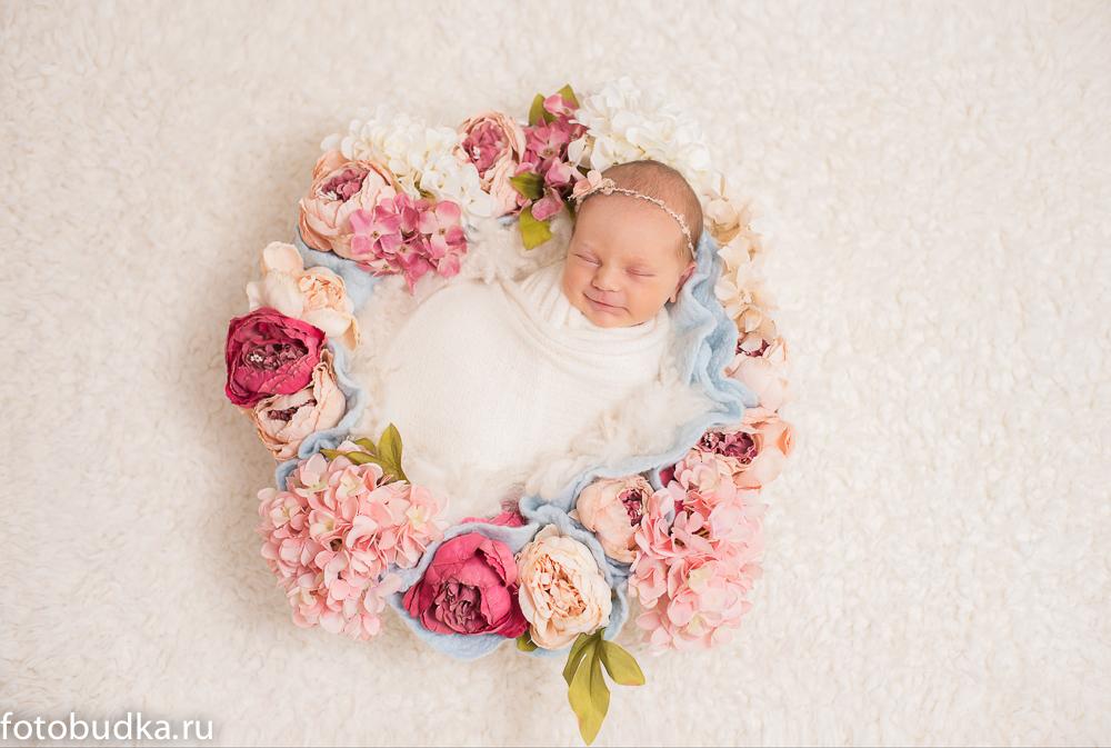 фотограф малышей