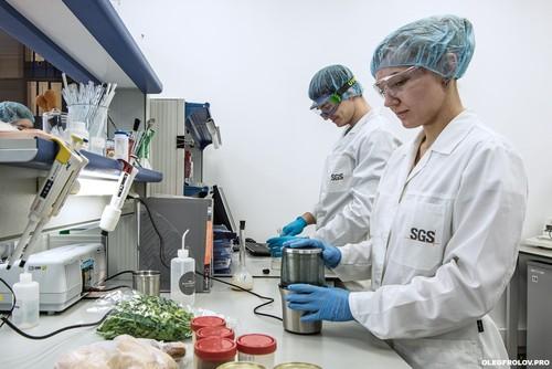 Лаборатории на производстве