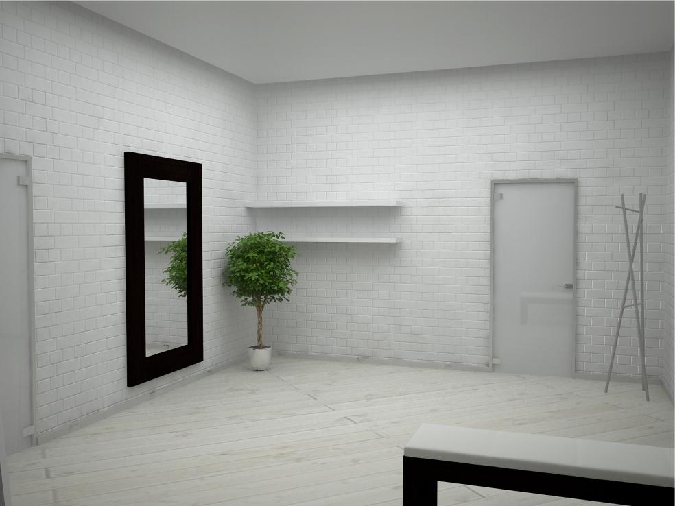 «White» Квартира 2009 год, г. Пермь
