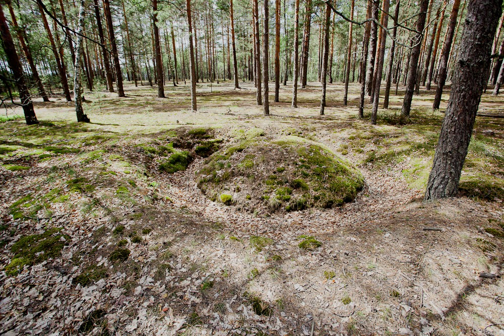 Каменное Село 2015