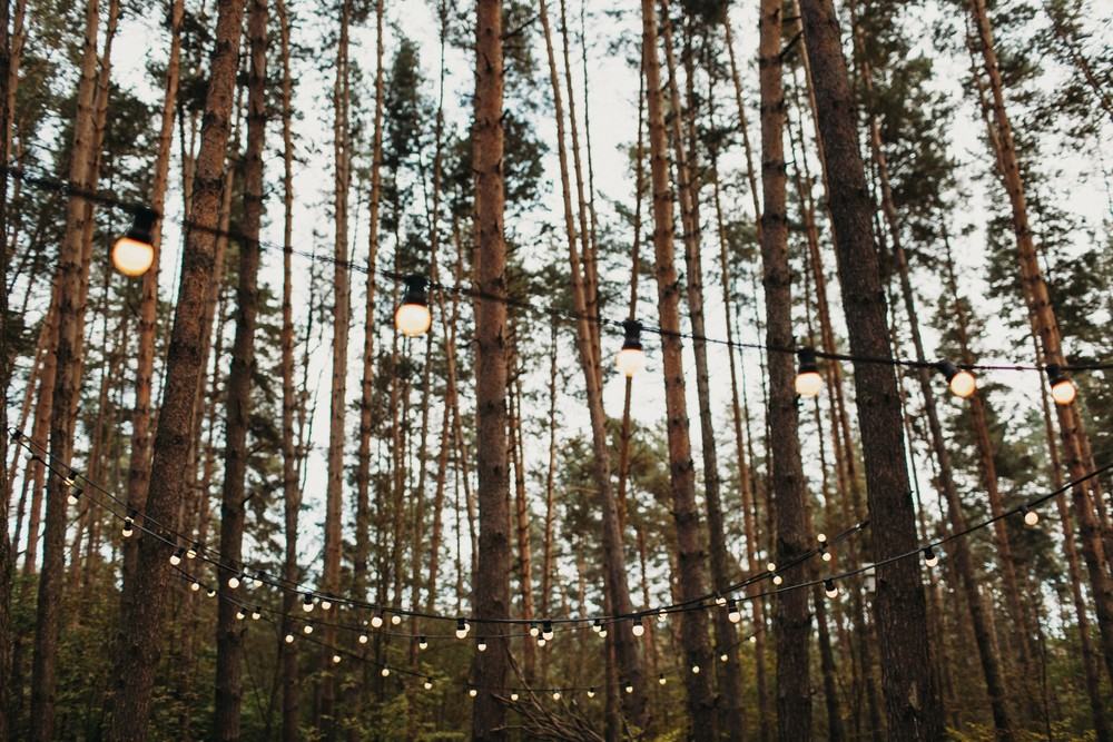 Настя и Стас | Сказочная свадьба в сосновом лесу