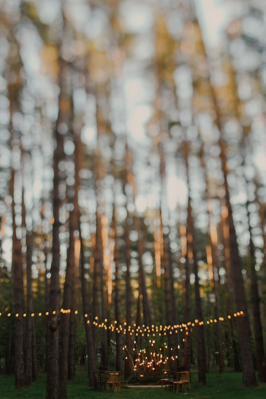 Света и Андрей | осень в дачном отеле Pine River