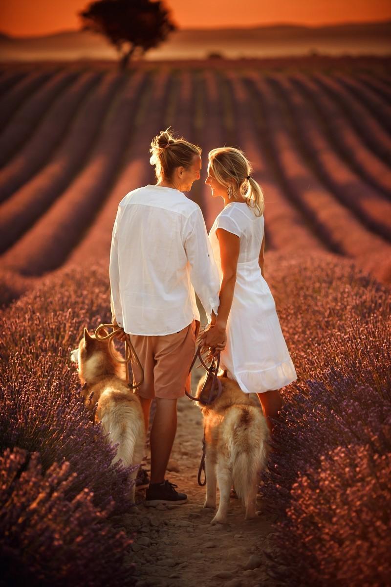 Любовь в лаванде