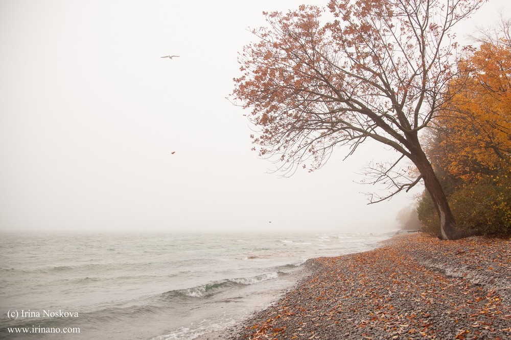 Travel - Ontario