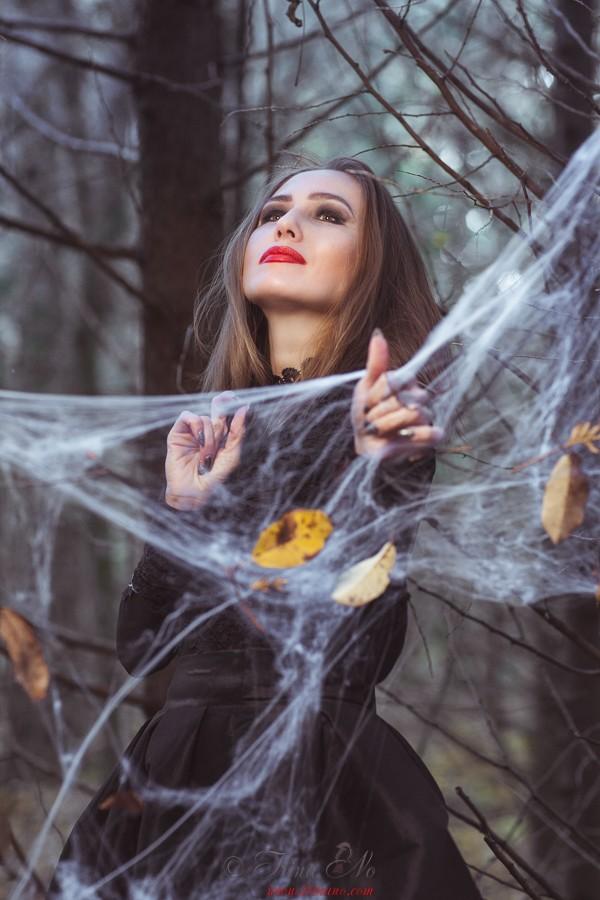 Art - Spider