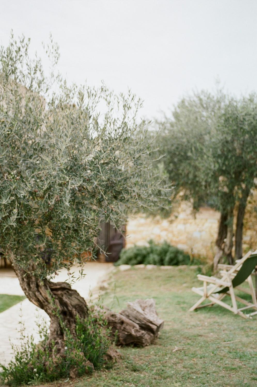 Spain Backyard Story