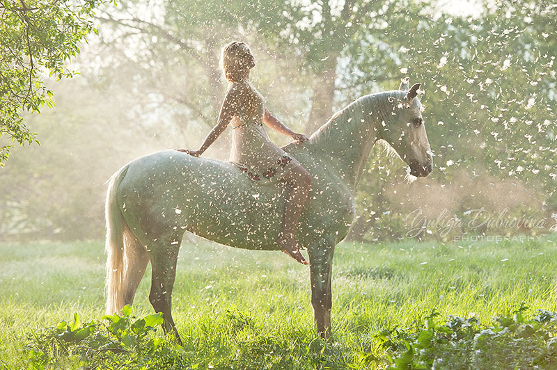 Лошади и люди