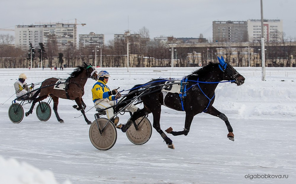 I этап чемпионата России русских троек