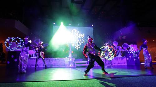 Световое шоу SilverDreams