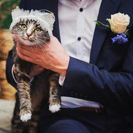 Свадьба Максима и Дианы