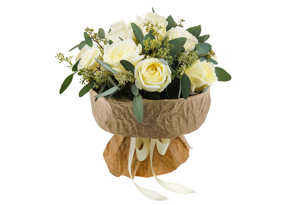 ИНТЕРЬЕРНАЯ СЪЕМКА + ПРЕДМЕТКА - Цветы на белом фоне - Фотографии цветов на белом фоне