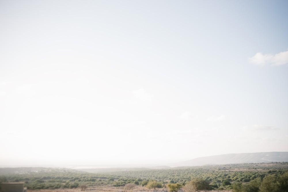 North olive