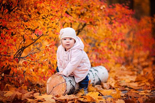 Анна Корнилова фотограф, детская фотосессия, осенняя фотосессия, осень, семейный фотограф
