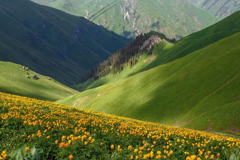 Киргизия Сары-Челек