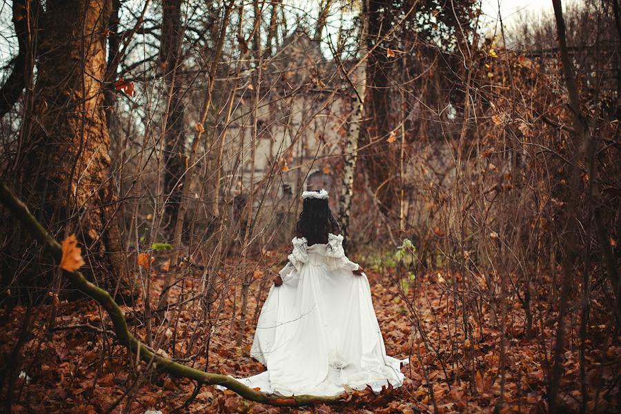 The Diary of Elen Rimbauer