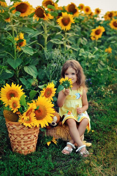Друзья, настало время подсолнухов!!! Приглашаю за солнечными фотографиями на вечерние мини-фотопрогулки в цветущие поля!