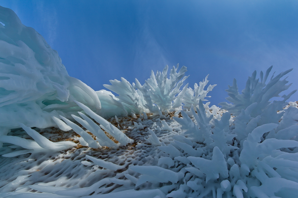 Байкальские сокровища. Кораллы