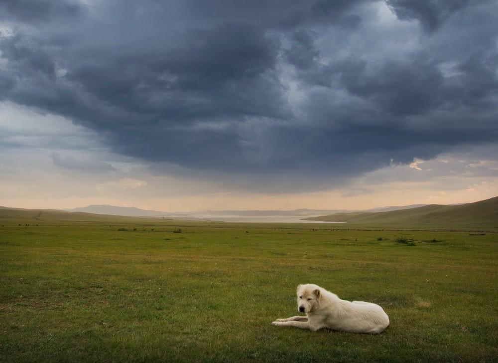 Монголия: Пейзажи