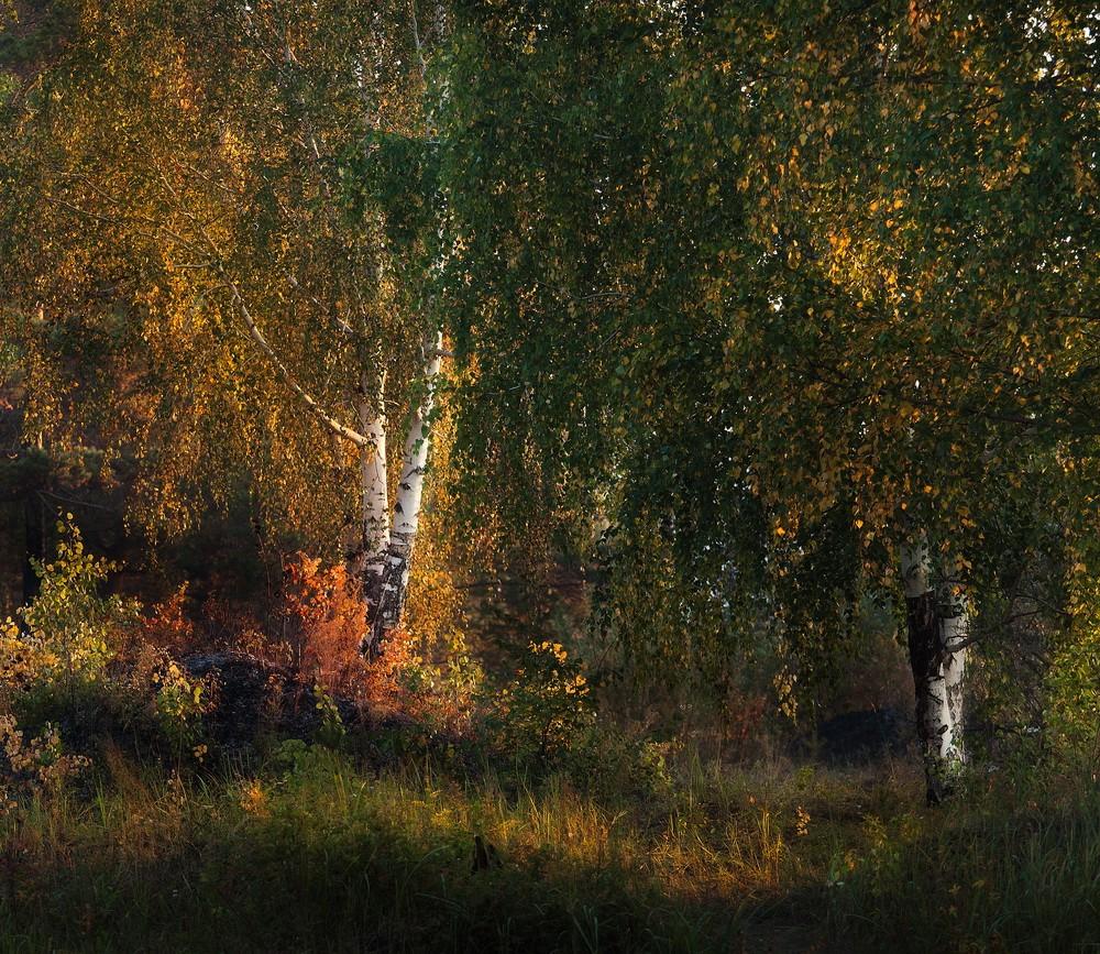 Landscapes: Autumn Sounds