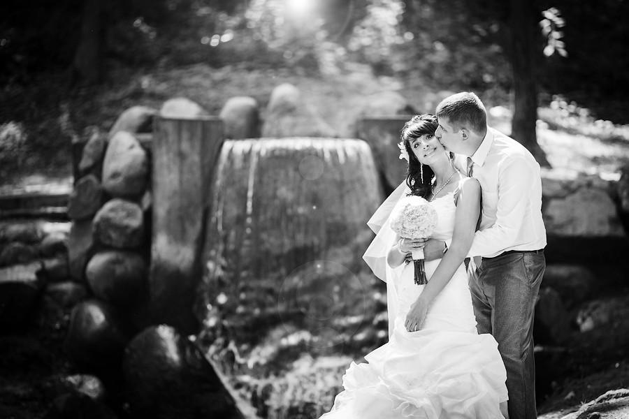Свадебное фото - 100