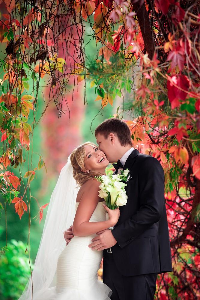 Свадебное фото - 232