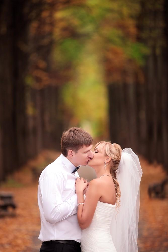 Свадебное фото - 245