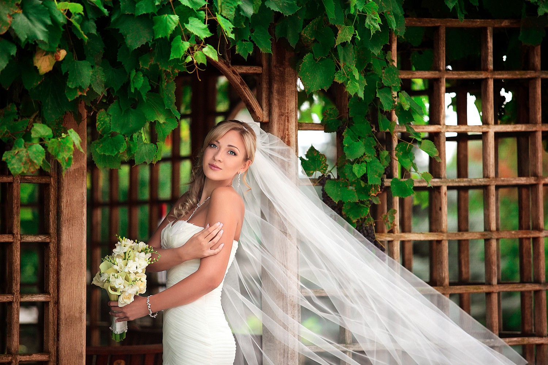 Свадебное фото - 222