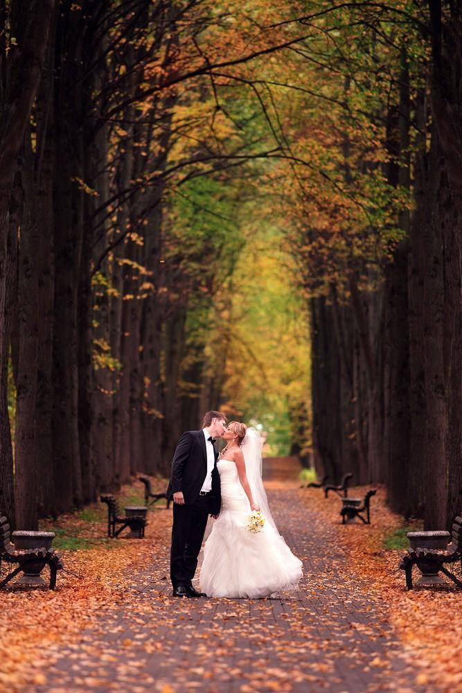 Свадебное фото - 243