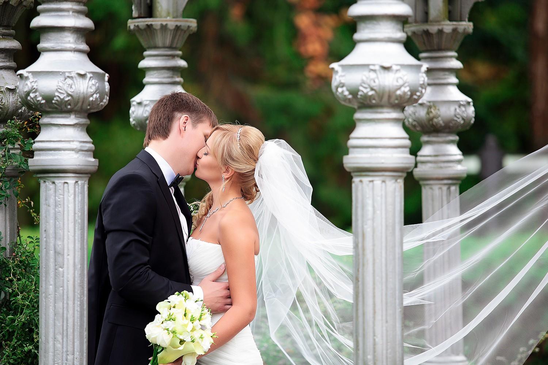 Свадебное фото - 240