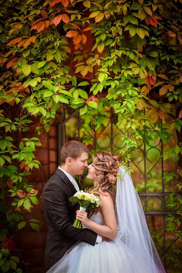 Свадебное фото - 76
