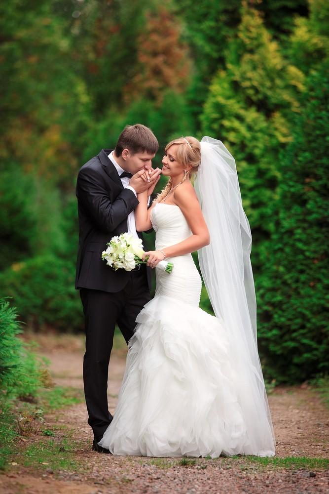 Свадебное фото - 247