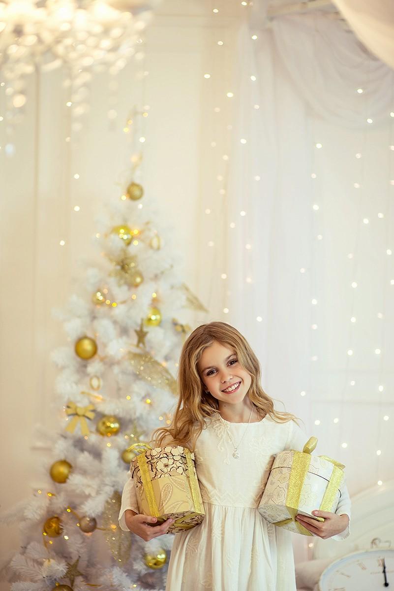 Новогодние серии - София