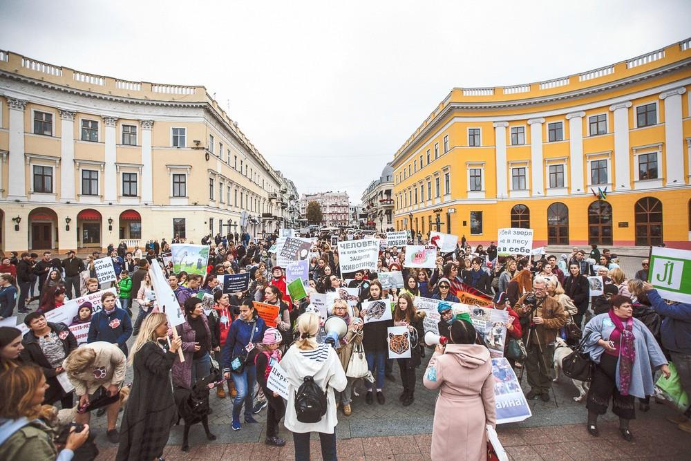 Всеукраїнський марш за права тварин в Одесі