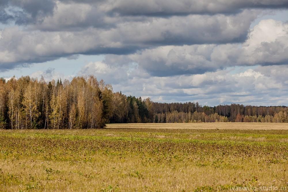 Природа средней полосы России