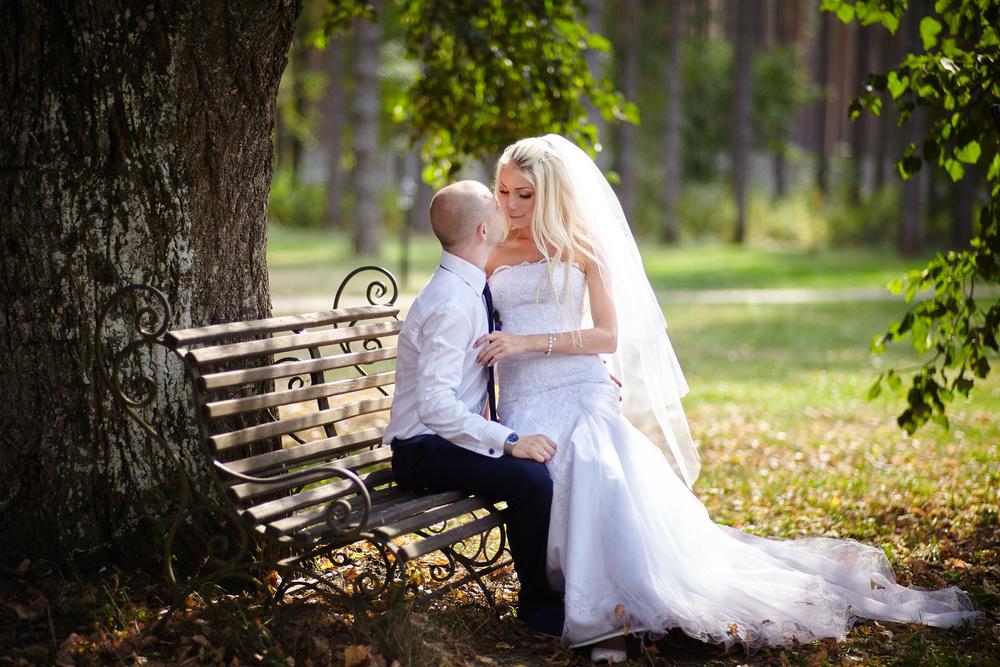 свадебная фотосессия в Сосновом Бору Брянск