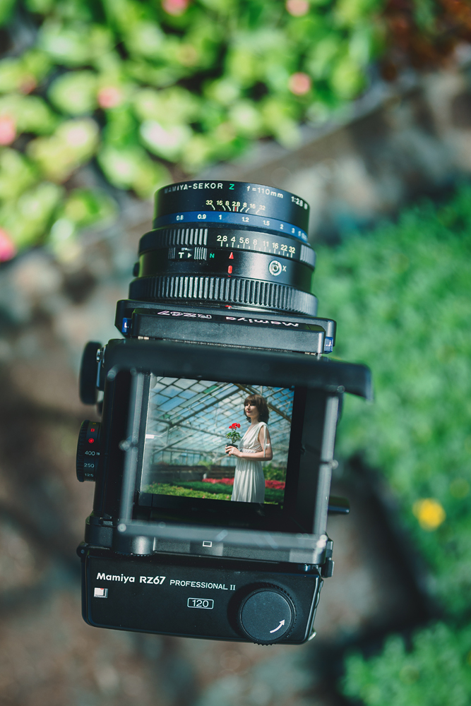 Портфолио - Алена, теплица, Тюмень - фотограф Денис Силин, свадебный фотограф Денис Силин, семейный фотограф Денис Силин