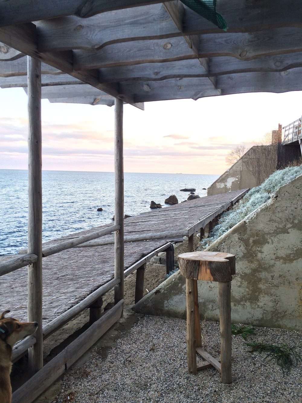 Крым. Алупка.