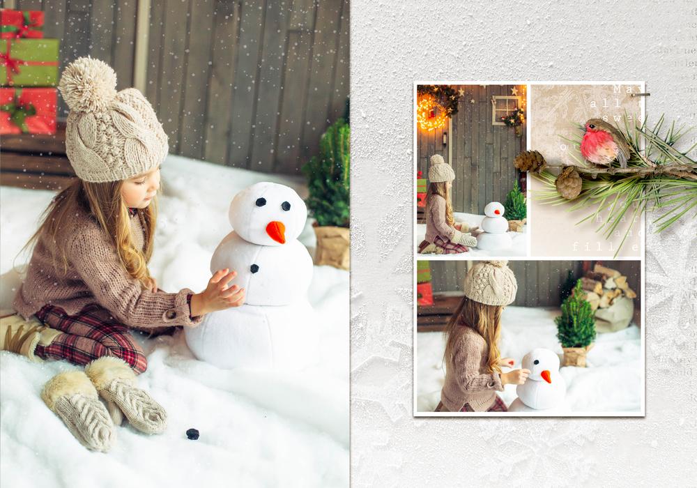 Снежная история