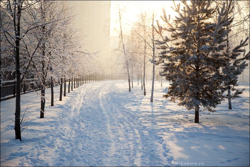 9 секретов удачной зимней фотосессии