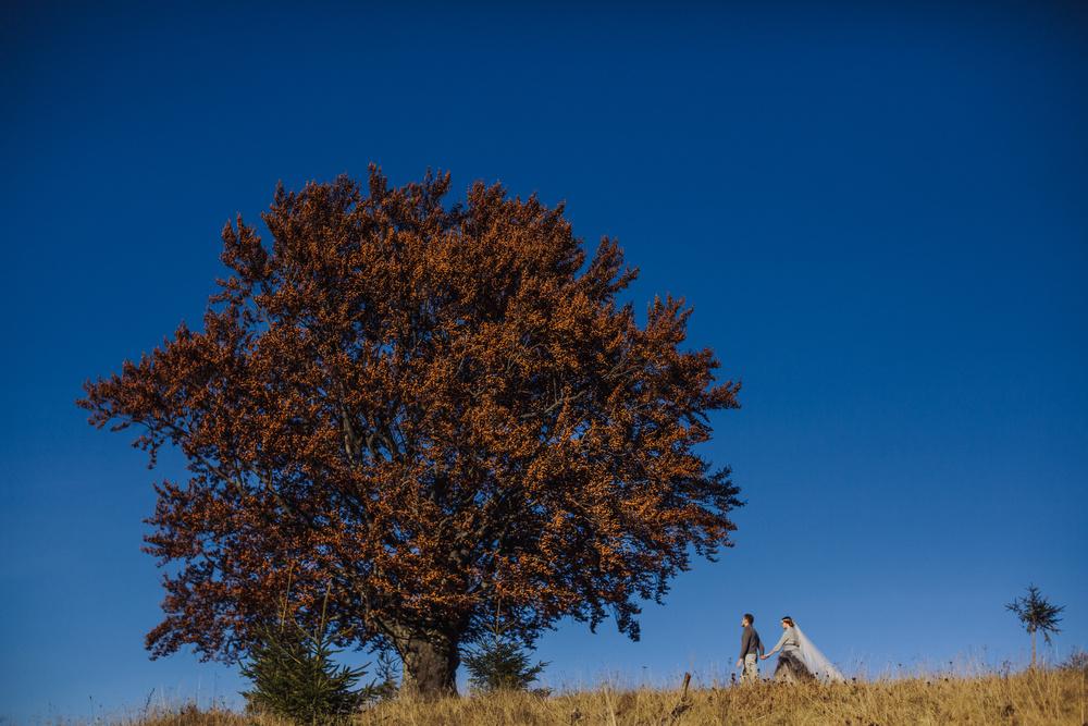 Осенние Карпаты