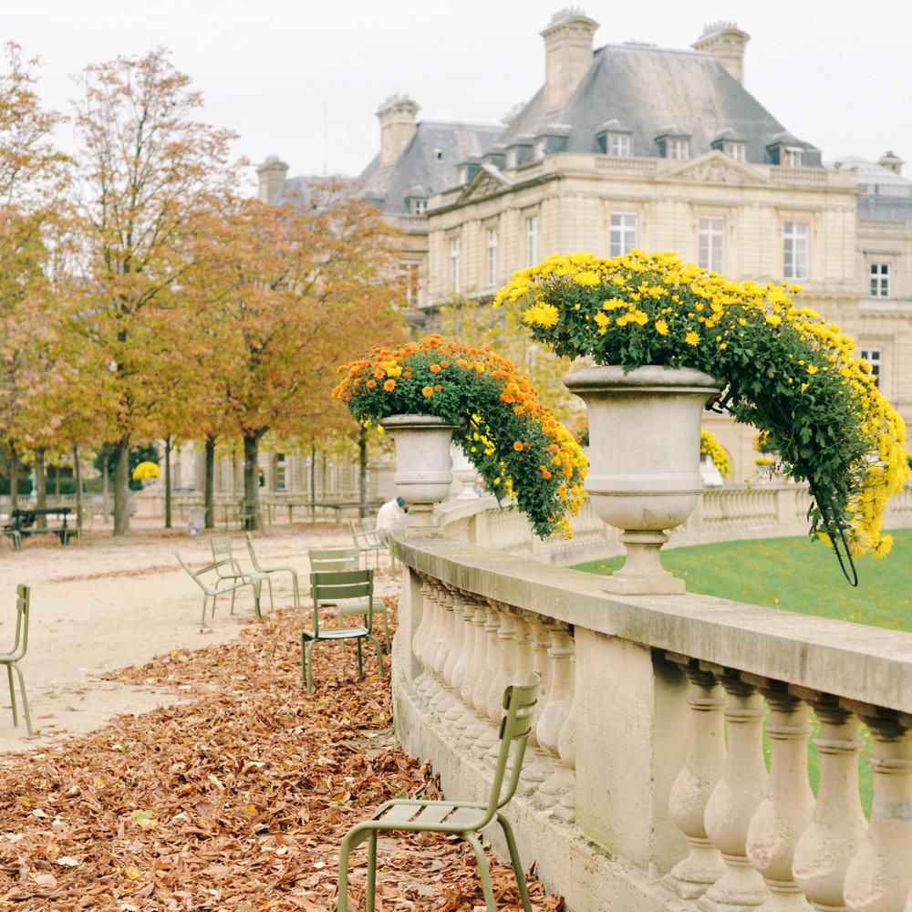 SOON : Paris, FRANCE 10/2014