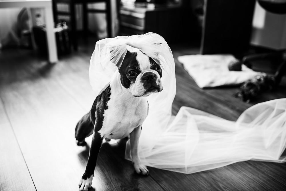 Свадьба - K&M