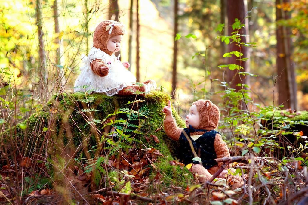 Bären im Wald...